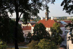 Blick vom Domberg auf das Rathaus